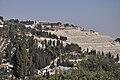 Jerusalem Jewish Cemetery (7740218526).jpg