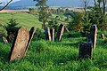 Jewish Cemetery in Lutowiska. Bieszczady Poland - panoramio (3).jpg