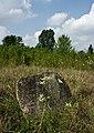 Jewish cemetery Bolimow IMGP6874.jpg