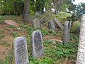 Jewish cemetery in Rakov 1a.jpg
