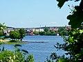 Jezioro Sępoleńskie widok z brzegu. - panoramio (6).jpg