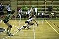 Juvenilia Volley.jpg