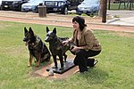 K9 MWD Chrach N178 with Bronze of Chrach and Sculptor Lena Toritch.jpg