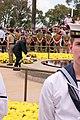 KP Nov 11 2012 gnangarra-7.jpg