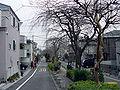 Kakinokizaka 1chome.jpg