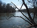 Kalamazoo River Outlook at the Kalamazoo Nature Center - panoramio.jpg