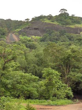 Kanheri Caves - The caves as viewed from the base of the hill.