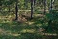 Kappelinmäen kalmisto Lappeenrannassa 2017 03.jpg