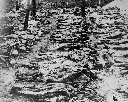 Photo from 1943 exhumation of mass grave of Polish officers killed by NKVD in the Katyn Forest in 1940 Katyn massacre 5.jpg