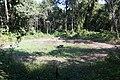 Khao Phra Wihan National Park - Don Tuan Khmer Ruins (MGK20850).jpg
