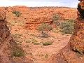 Kings Canyon, Australia, 2004 - panoramio (4).jpg