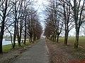 Koło Zalewu - panoramio (1).jpg