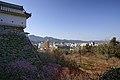 Kochi Castle10s3872.jpg
