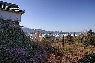 Kōchi Castle - Castle and central Kōchi city
