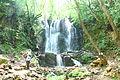 Koleshinski vodopad 22.JPG