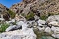Kourtaliotiko River in Kourtaliotiko Gorge on the island of Crete, Greece.jpg