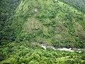 Kundhi River @ Silent Valley National Park - panoramio (1).jpg