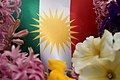 Kurdish flag with flowers 07.jpg
