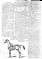 L'Illustration - 1858 - 030.png