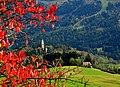 L'autunno che accende i colori - panoramio.jpg