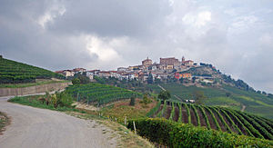 La Morra seen from south.JPG