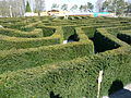 Labyrinth in Stockeld Park 01.JPG
