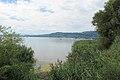 Lac de Morat - panoramio (20).jpg