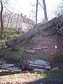 Lackarebäcks källa, den 19 april 2008, bild 1.jpg