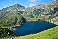 Lago Ritort dall'alto.jpg