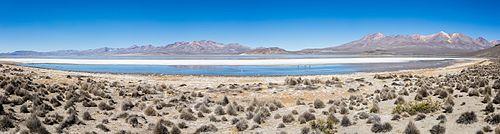 Laguna de Salinas, Arequipa, Perú, 2015-08-02, DD 16-19 PAN.JPG