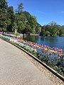 Lake Lugano29.jpg