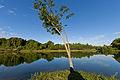 Lake at Eco Farm early morning.jpg