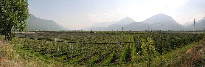 Lana Südtirol Panorama 3