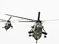 Landing Helicopters (4405329955).jpg