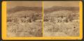 Landscape, Winter, from Robert N. Dennis collection of stereoscopic views 6.png