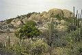 Landschap met rotsen - 20652556 - RCE.jpg