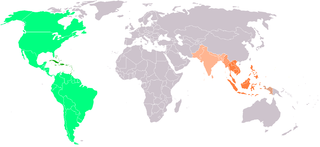 https://upload.wikimedia.org/wikipedia/commons/thumb/3/37/Las_Indias.png/320px-Las_Indias.png