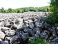 Lassouts Roquelaure coulée lave (2).jpg