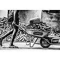 Le livreur de manioc.jpg
