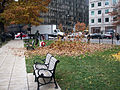 Leaf blower in action, Washington DC.jpg
