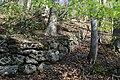 Leitenwälder der Isar 0657.jpg