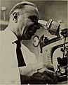 Lester R. Aronson.jpg