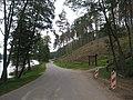 Linkmenų sen., Lithuania - panoramio (21).jpg