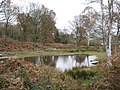 Littleworth Common, The western pond - geograph.org.uk - 1047512.jpg