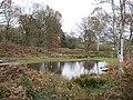 Littleworth Common, The western pond - geograph.org.uk - 1047512.jpg