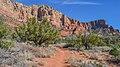 Llama Trail (39316139194).jpg
