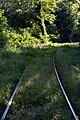 Lobau Anschlussstrecke Ölhafenbahn Mai 2016 a.jpg