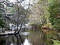 Loch Skibo, near Rhivaig - geograph.org.uk - 713239.jpg