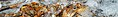 Loimaa Wikivoyage Banner.JPG