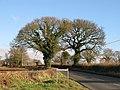 Ludlow - Bridgnorth road - geograph.org.uk - 1601038.jpg